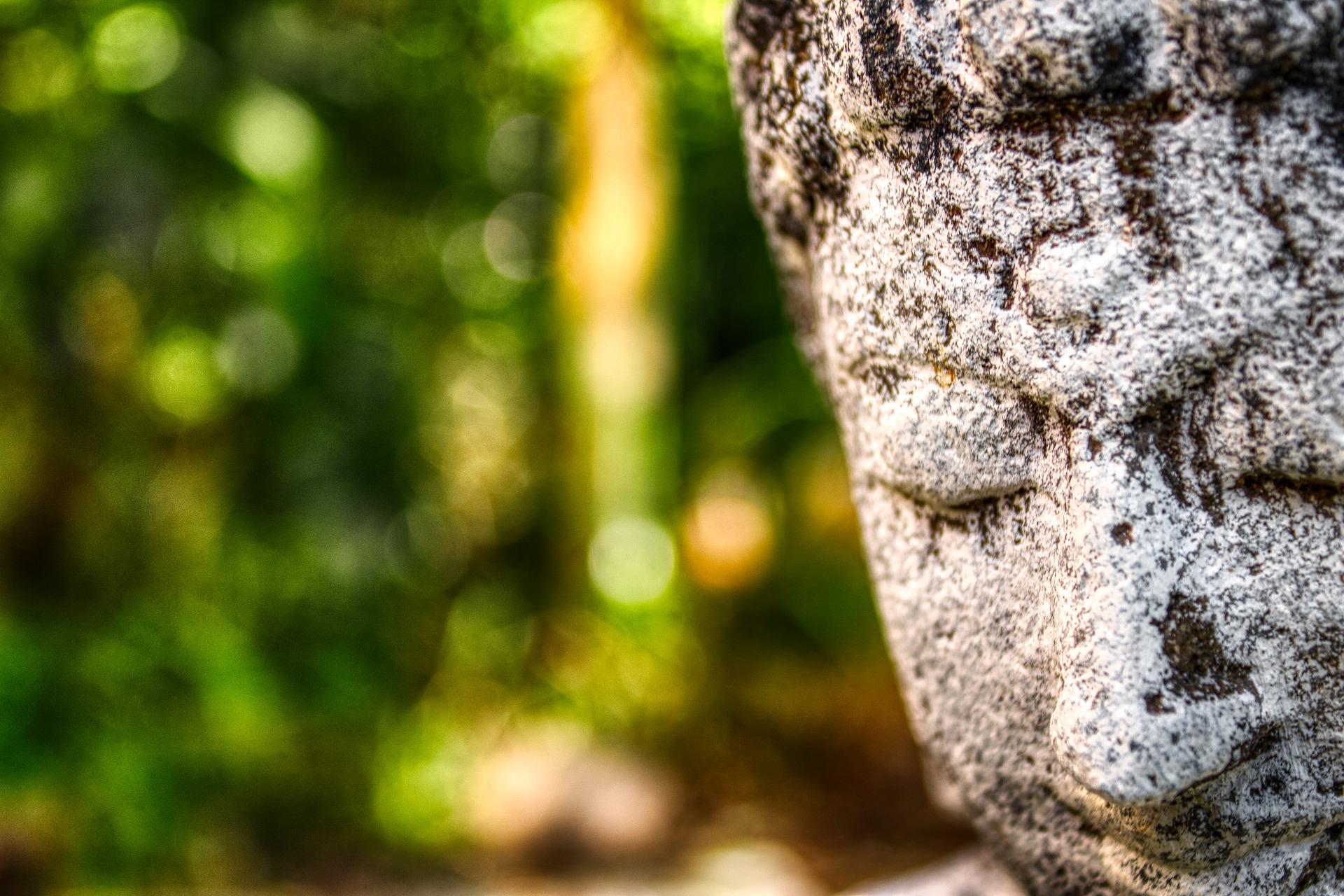 Buddha's meditation